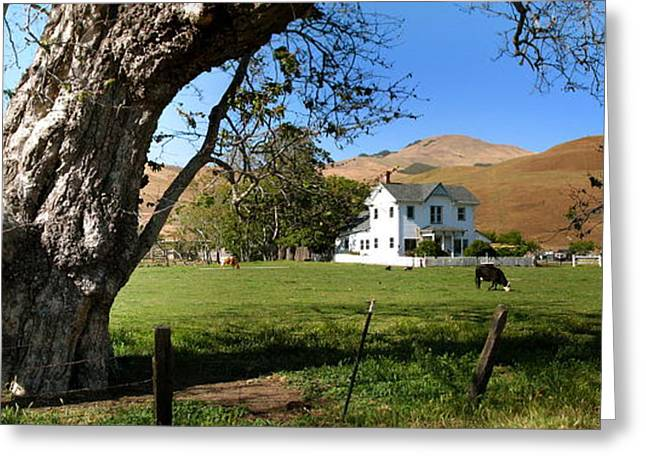 Cambria Greeting Cards - Cambria Farm House Greeting Card by Jan Cipolla