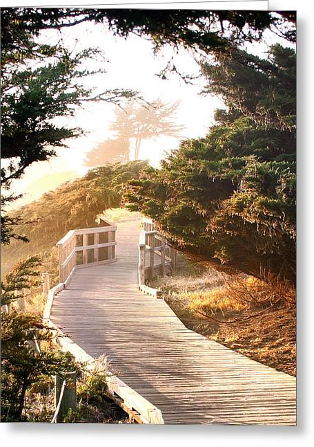 Cambria Greeting Cards - Cambria Moonstone Walk Greeting Card by Michael Rock