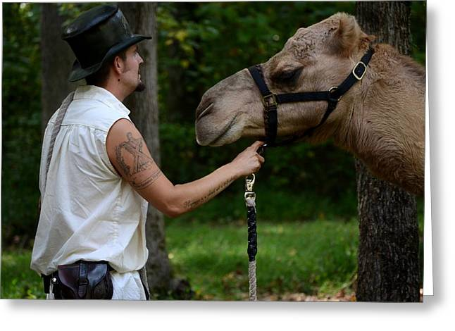 Camel Keeper Greeting Card by Eamon Forslund
