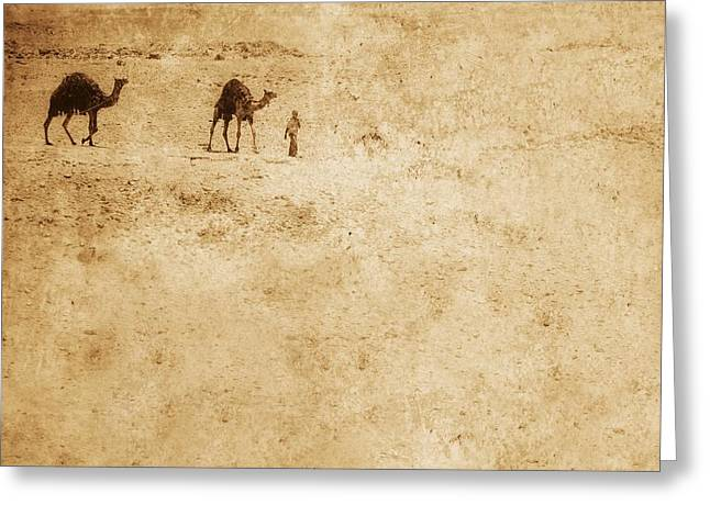 Sweltering Greeting Cards - Camels In The Desert Greeting Card by Chris Knorr