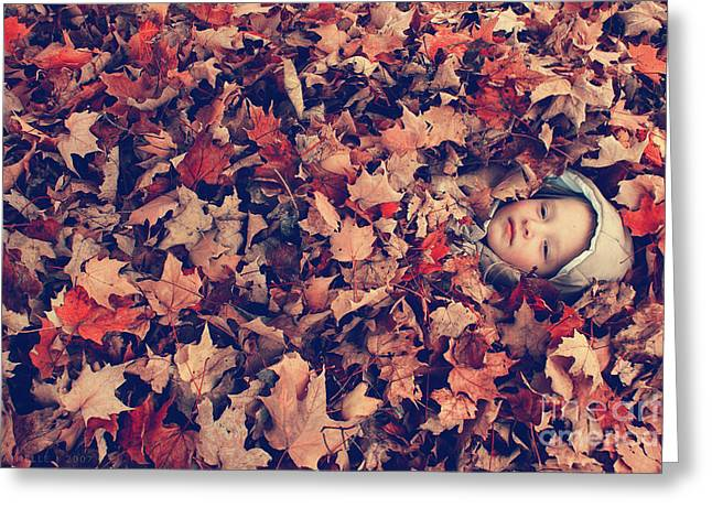 Aimelle Photography Greeting Cards - Camouflage 02 Greeting Card by Aimelle