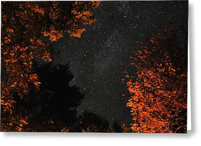 Jeff Moose Greeting Cards - Campfire Glow Greeting Card by Jeff Moose
