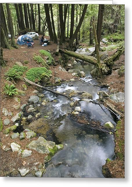 Big Sur California Greeting Cards - Camping Along Limekiln Creek Greeting Card by Rich Reid