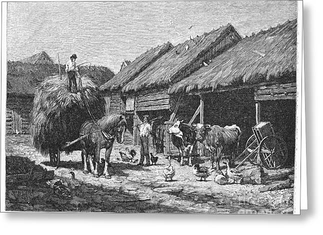 Barn Yard Greeting Cards - Canada: Farming, 1883 Greeting Card by Granger