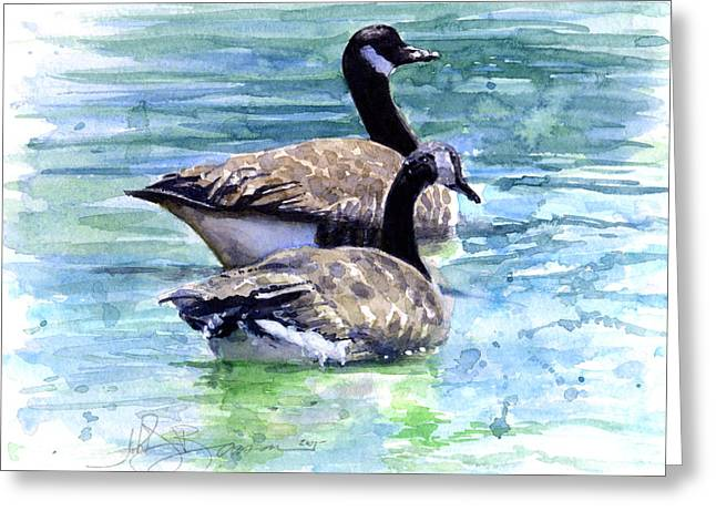 Canada Goose Greeting Cards - Canada Geese Greeting Card by John D Benson