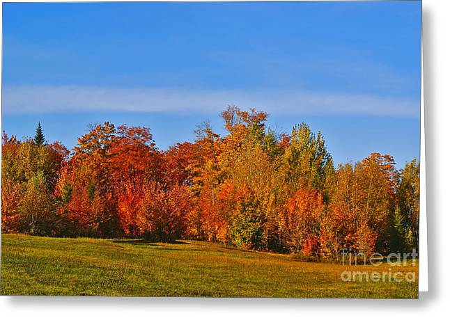 Canada in Colors Greeting Card by Aimelle