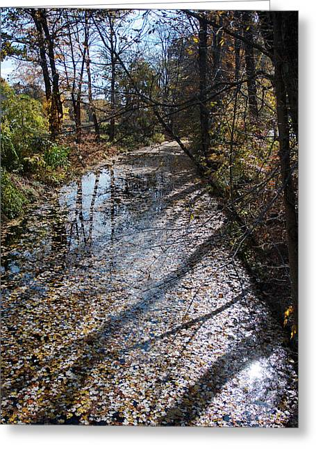 Blackstone River Greeting Cards - Canal Path Greeting Card by Barry Doherty