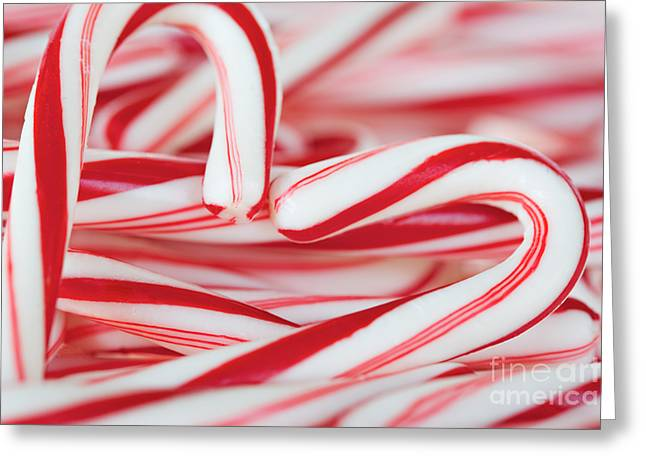 Kim Photographs Greeting Cards - Candy Cane Love Greeting Card by Kim Fearheiley