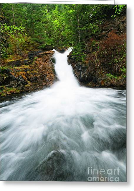 Alberta Water Falls Greeting Cards - Canmore Falls Greeting Card by Ginevre Smith