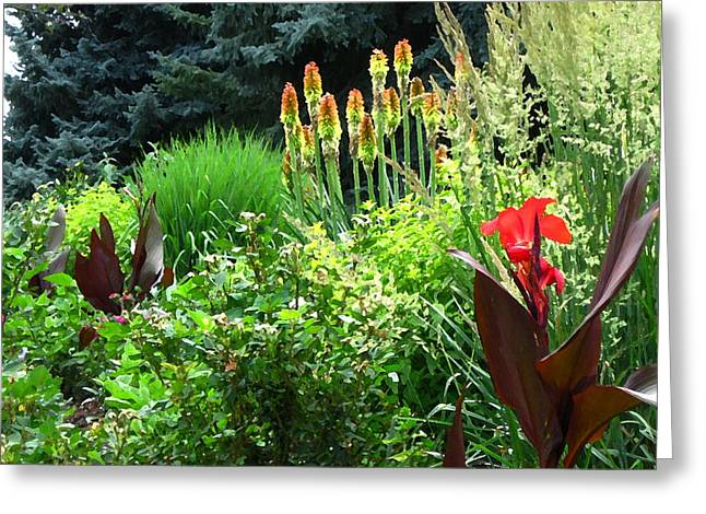 Canna Digital Art Greeting Cards - Canna Lily Garden Greeting Card by Gretchen Wrede