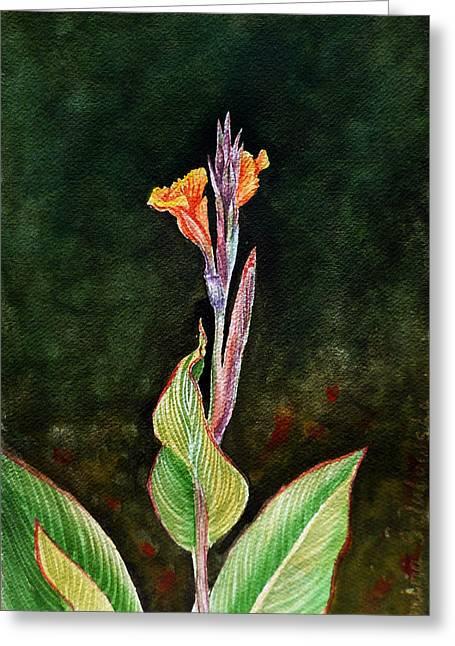 Canna Lily Greeting Card by Irina Sztukowski