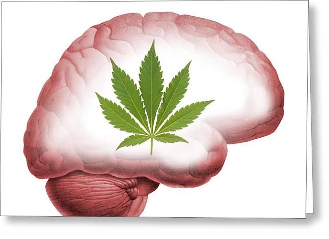 Cannabis Use, Artwork Greeting Card by Victor De Schwanberg