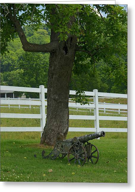Lichen Covered Trees Greeting Cards - Cannon Tree and Fence Greeting Card by Douglas Barnett