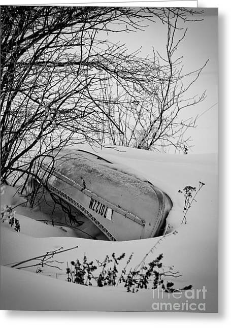 Canoe Photographs Greeting Cards - Canoe Hibernation Greeting Card by Shutter Happens Photography