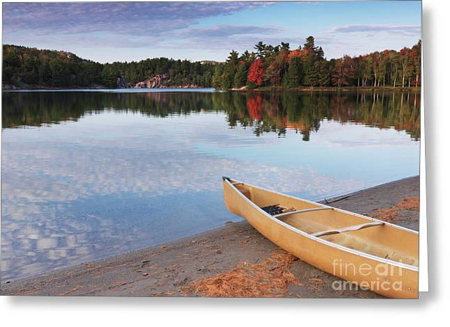 Canoe Greeting Cards - Canoe on a Shore Autumn Nature Scenery Greeting Card by Oleksiy Maksymenko
