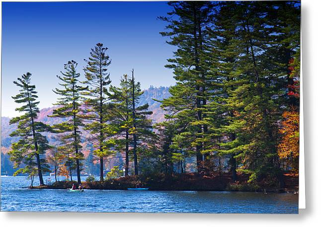 Tree Leaf On Water Greeting Cards - Canoeing in the Fall Greeting Card by David Patterson
