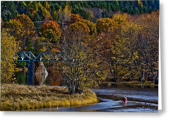 Roger Lewis Greeting Cards - Canoer on the River in Autumn Greeting Card by Roger Lewis