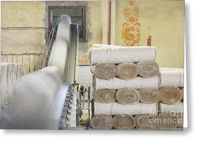 Conveyor Belt Greeting Cards - Canvas Rolls on a Conveyor Greeting Card by Magomed Magomedagaev