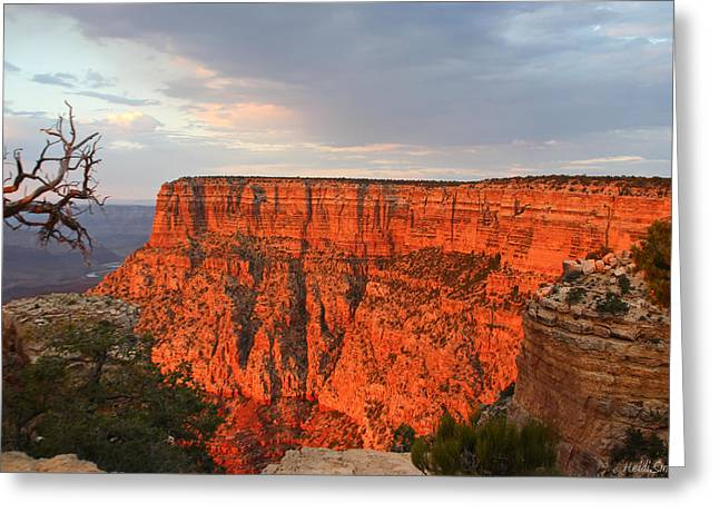 The Grand Canyon Greeting Cards - Canyon Beauty Greeting Card by Heidi Smith