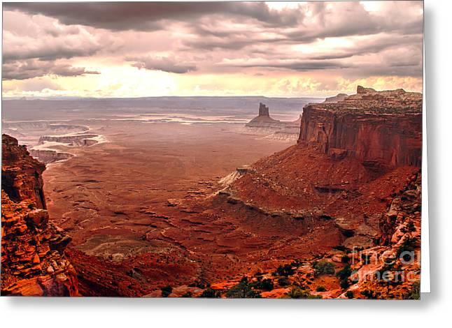 Canyonland Rain Greeting Card by Robert Bales