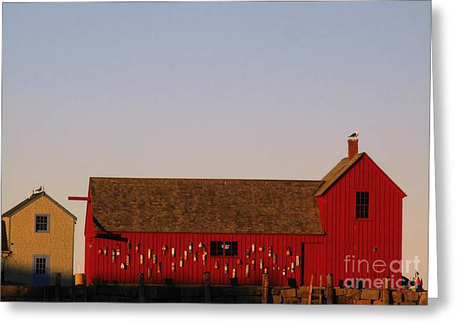 Red Fishing Shack Greeting Cards - Cape Ann Motif Number 1 Greeting Card by Juergen Roth