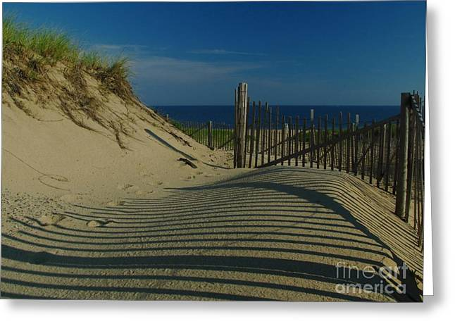 Cape Cod National Seashore Greeting Cards - Cape Cod National Seashore Greeting Card by Juergen Roth