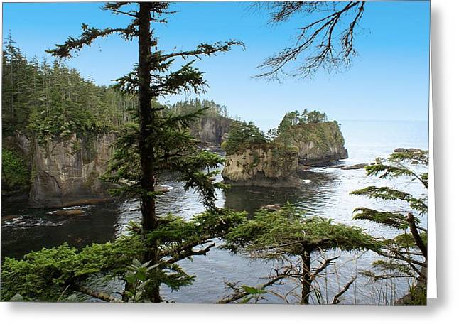Cape Flattery Greeting Card by Christy Leigh