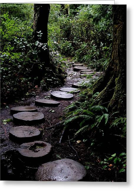 Cape Flattery Greeting Cards - Cape Flattery Trail Greeting Card by Fred Russell