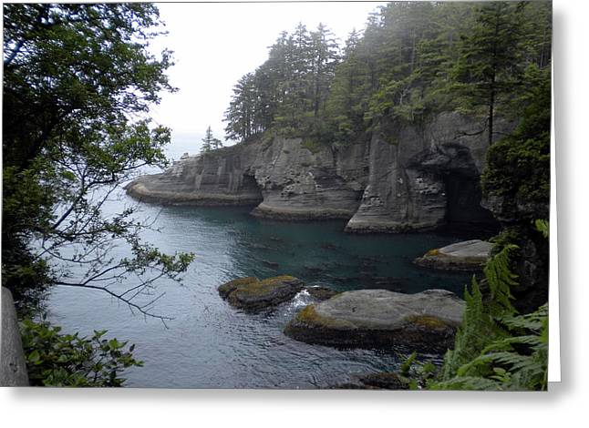 Cape Flattery Greeting Cards - Cape Flattery Greeting Card by Wanda Jesfield