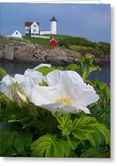 Cape Neddick Greeting Cards - Cape Neddick Lighthouse Greeting Card by Ben Kemp