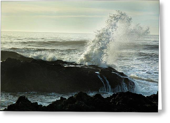 Oregon Coast Greeting Cards - Cape Perpetua Greeting Card by Becky Thompson