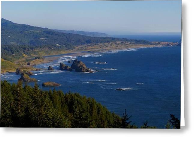 Meyers Creek Beach Oregon Greeting Cards - Cape Sebastian South 2 Greeting Card by Tatiacha  Bhodsvatan