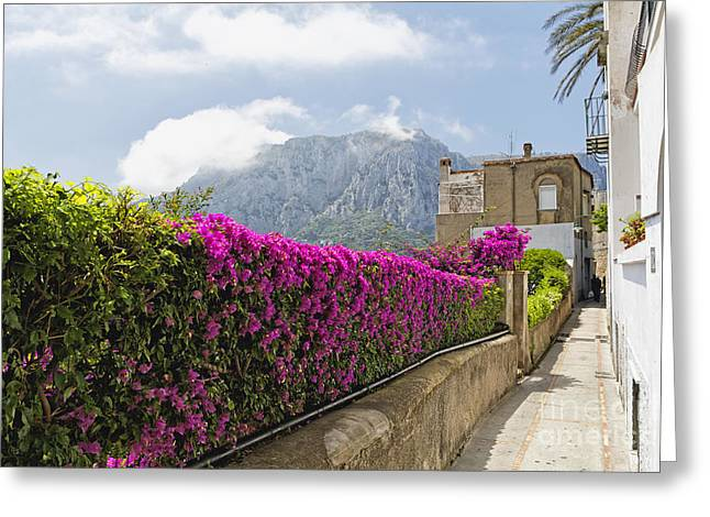 Southern Italy Greeting Cards - Capri Alleyway Greeting Card by George Oze