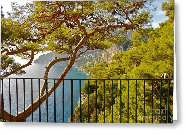 Italian Art Photographs Greeting Cards - Capri panorama with tree Greeting Card by Italian Art