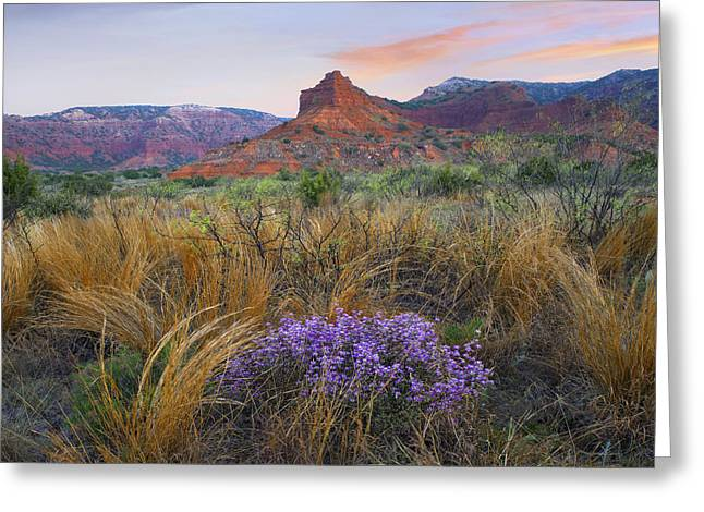 Caprock Canyons State Park Greeting Cards - Caprock Canyons State Park Texas Greeting Card by Tim Fitzharris
