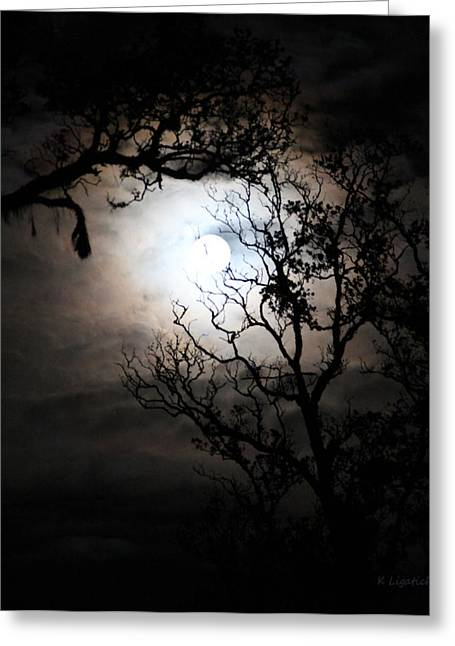 Moonlit Night Greeting Cards - Capturing The Full Moon Greeting Card by Kerri Ligatich