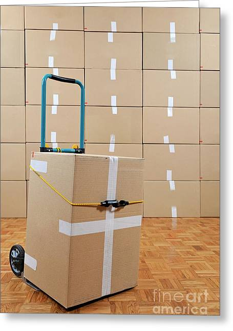 Cardboard Greeting Cards - Cardboard box on dolly Greeting Card by Sami Sarkis