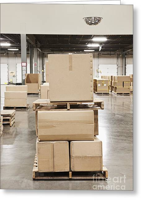 Cardboard Greeting Cards - Cardboard Boxes Stacked on Wooden Pallets Greeting Card by Jetta Productions, Inc