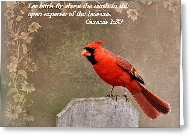 Cardinals. Wildlife. Nature. Photography Greeting Cards - Cardinal and Scripture Greeting Card by Todd Hostetter