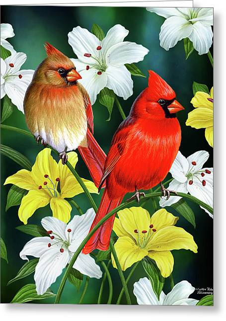 Song Birds Greeting Cards - Cardinal Day 2 Greeting Card by JQ Licensing