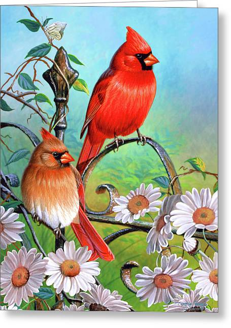 Song Birds Greeting Cards - Cardinal Day 3 Greeting Card by JQ Licensing