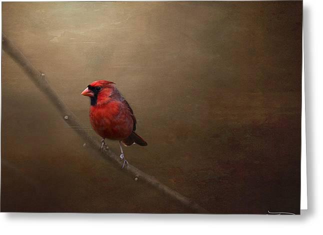 Cris Hayes Greeting Cards - Cardinal Old Master - Artist Cris Hayes Greeting Card by Cris Hayes