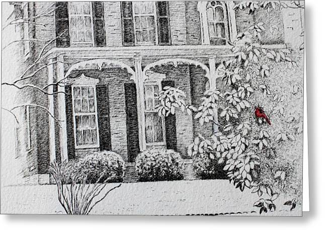 Cardinal Greeting Card by Patsy Sharpe
