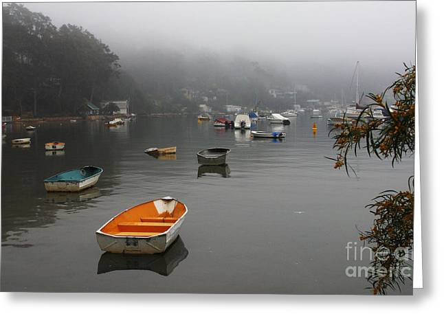 All Landscape Greeting Cards - Careel Bay mist Greeting Card by Sheila Smart