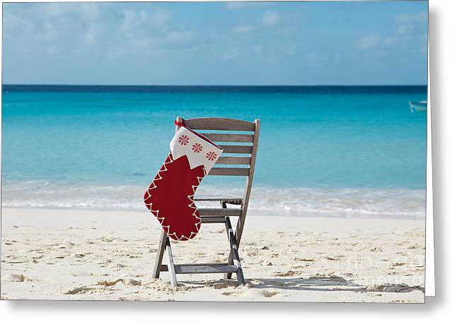 Kim Fearheiley Photograph Greeting Cards - Caribbean Christmas Greeting Card by Kim Fearheiley