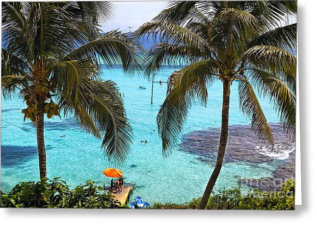 Isla Mujeres Greeting Cards - Caribbean Playground Greeting Card by George Oze