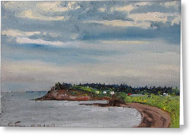 Francois Fournier Greeting Cards - Caribou Beach Pictou NS Canada Greeting Card by Francois Fournier