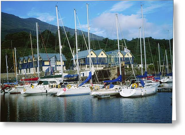 Buildings By The Ocean Greeting Cards - Carlingford Marina, Carlingford, County Greeting Card by The Irish Image Collection
