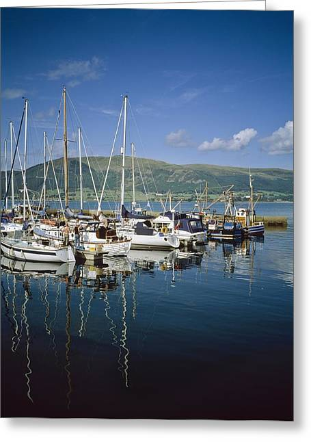 Reflections Of Sky In Water Greeting Cards - Carlingford Yacht Marina, Co Louth Greeting Card by The Irish Image Collection