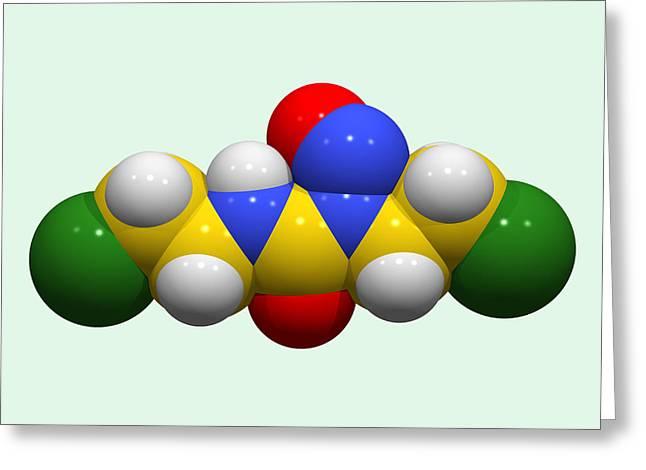 Drug Molecule Greeting Cards - Carmustine Chemotherapy Drug Molecule Greeting Card by Dr Tim Evans